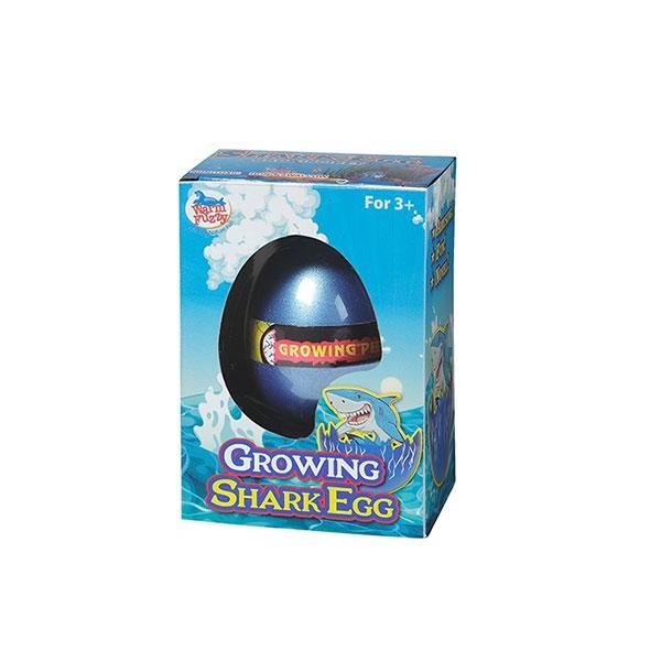 HATCH N GROW SHARK